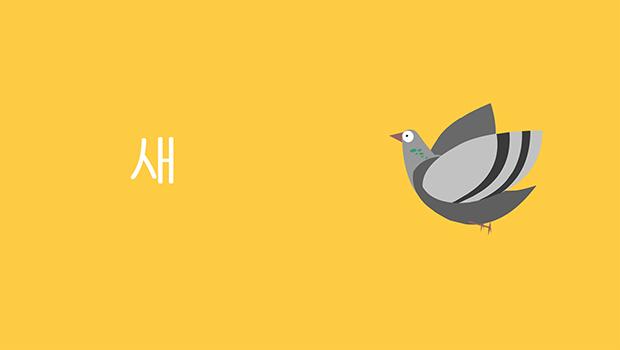 새 Bird