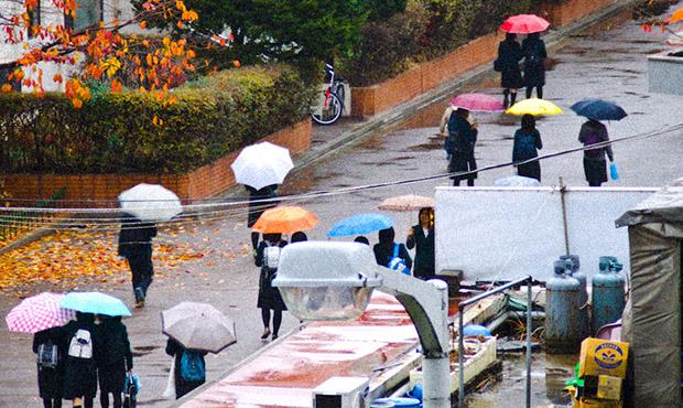 Umbrella Choir
