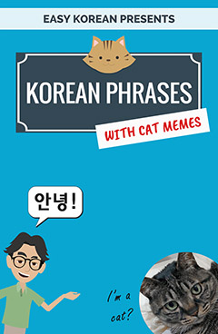 Korean Phrase Book
