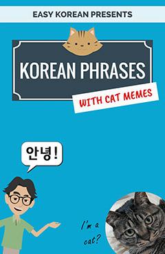 Korean phrasebook 500 phrases for travelers beginners 299 korean phrase book m4hsunfo